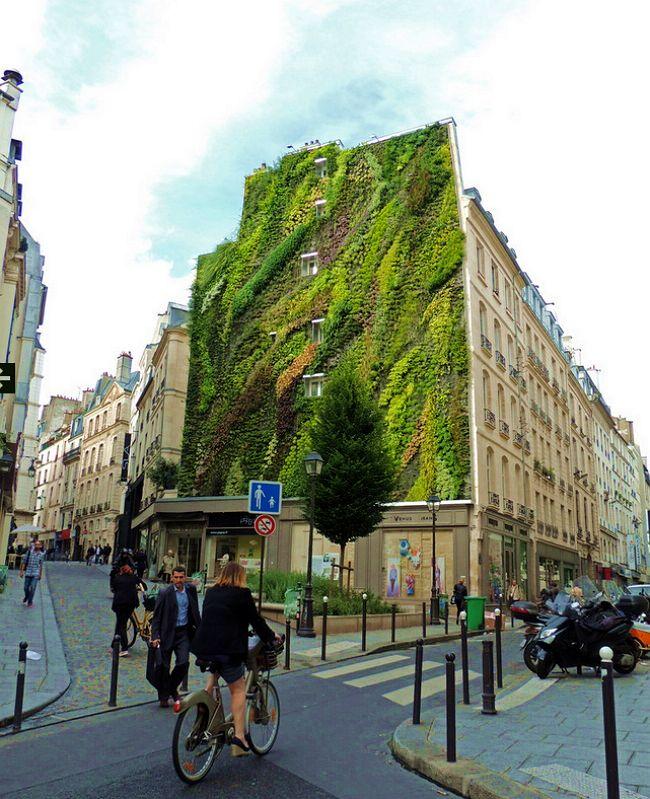 биологический бетон вертикальное озеленение
