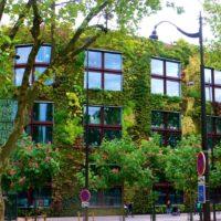 Что такое биологический бетон: вертикальное озеленение