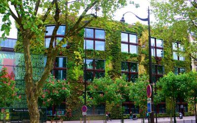 биологический бетон - вертикальное озеленение