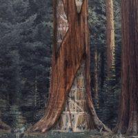 Концепция «реконструкции» деревьев