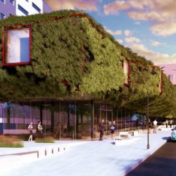 Зеленая библиотека в Мадриде