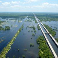 Мэнчек Свамп — 36,7-километровый мост через болота Луизианы
