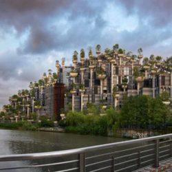 Реализация проекта «1000 деревьев» близится к завершению