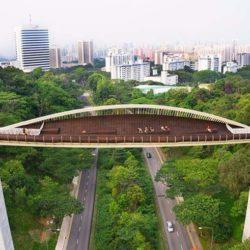 Волны Хендерсона в Сингапуре
