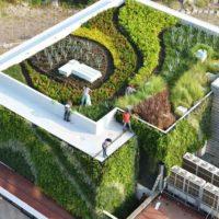 ГОСТ Р 58875-2020 Озеленяемые и эксплуатируемые крыши зданий и сооружений