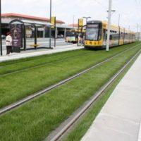 Проект озеленения трамвайных путей в Дрездене с помощью системы подпочвенной ирригации