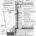 Фундаменты. Конструктивные решения с применением строительных материалов и изделий, производимых компанией ООО «Сен-Гобен Строительная Продукция Рус» в формате DWG и PDF