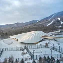 Здание конгресс-центра по проекту MAD Architects